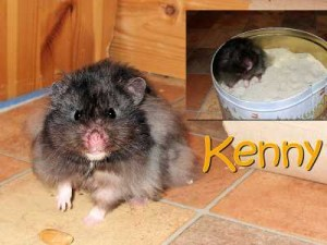 kenny-23072010_th