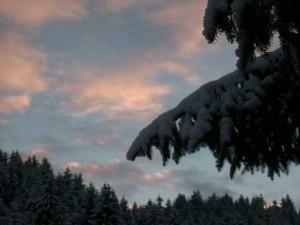 weihnachten201001